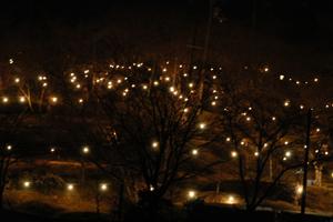 高野口公園ライトアップ南からみた図